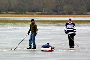 Ice hockey faller