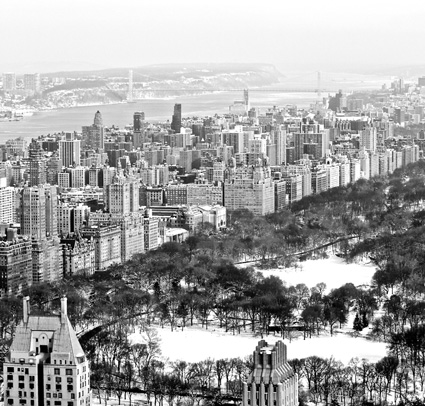 Central Park from Rockefeller Tower