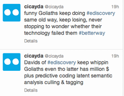 Cicaydatweets