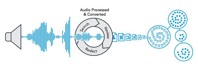 RingtailAudio